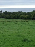 Site Betwe Drumnagreagh Road, Larne